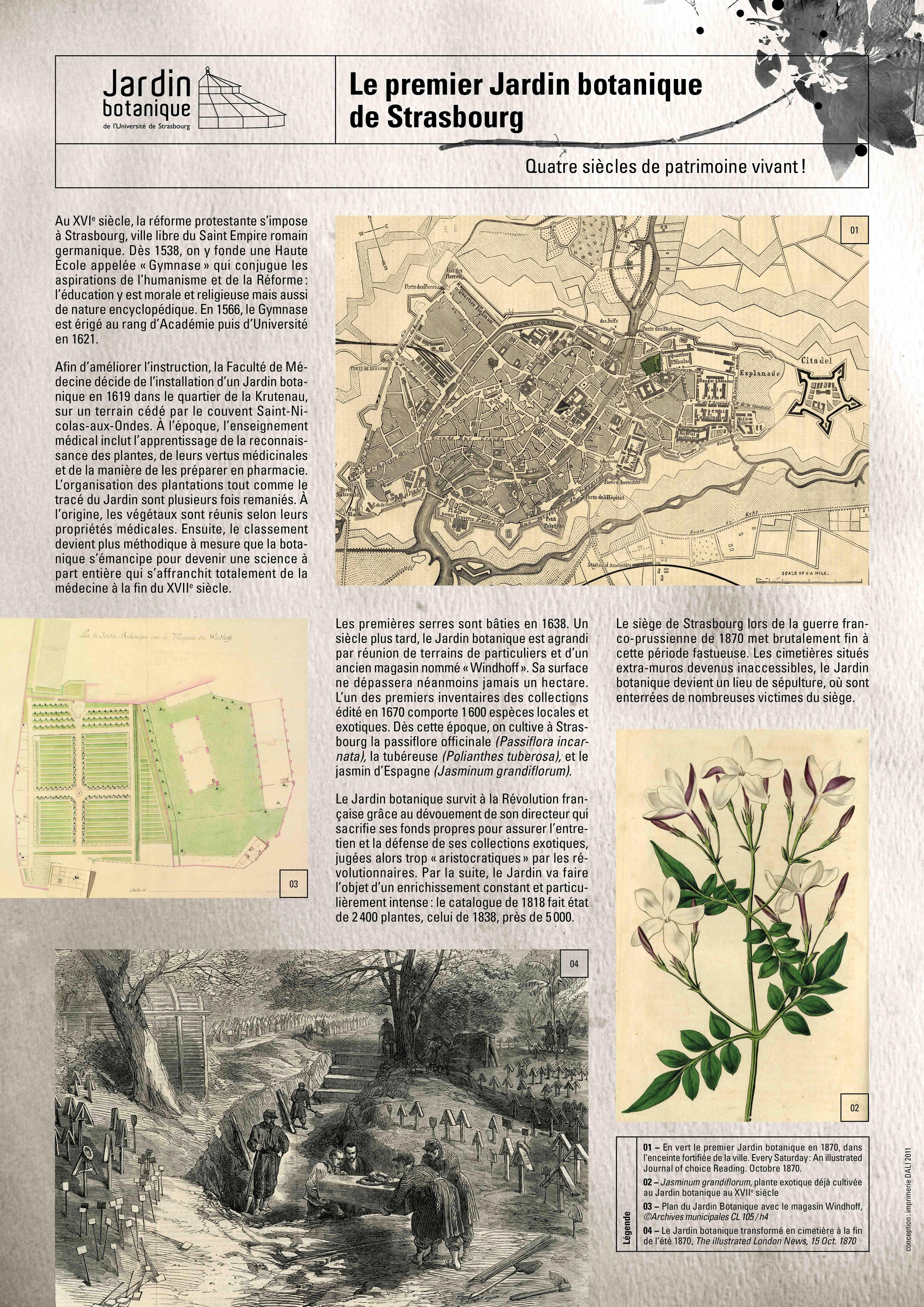 Jardin botanique Expositions Université de Strasbourg