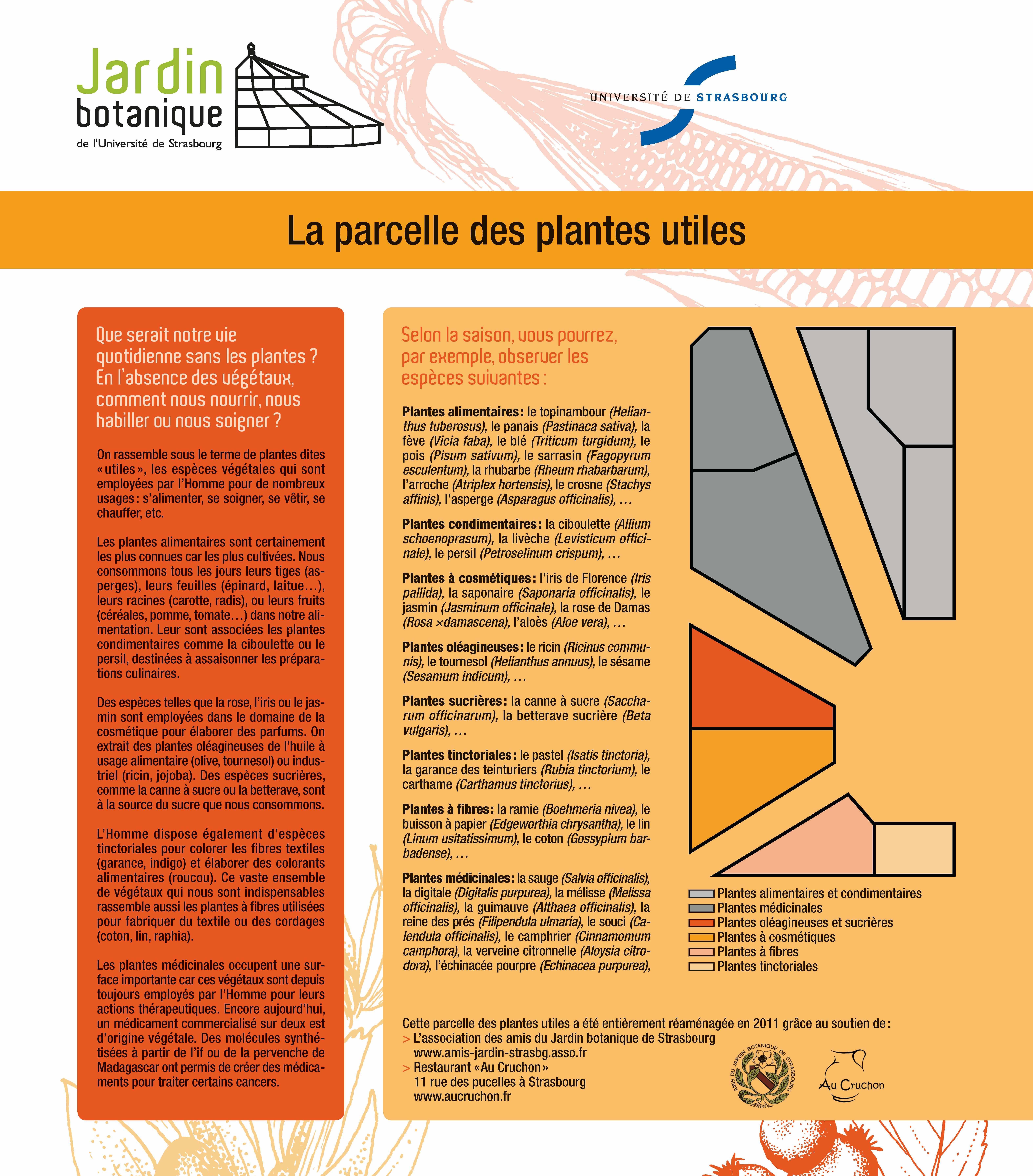 Jardin botanique Plantes utiles Université de Strasbourg