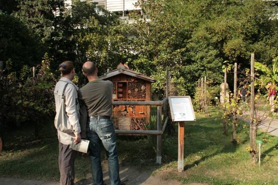 Hôtel à insectes du Jardin botanique