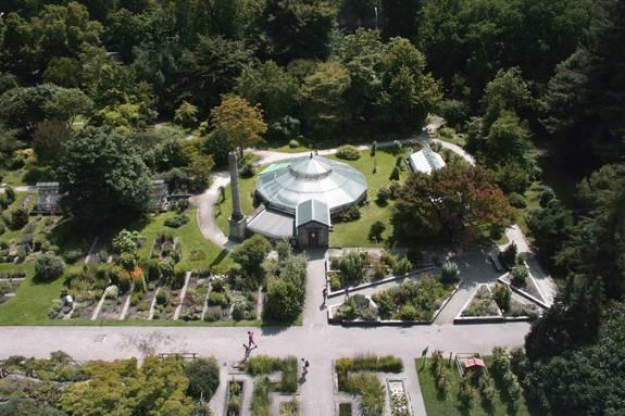 Jardin botanique : Serre de Bary - Université de Strasbourg