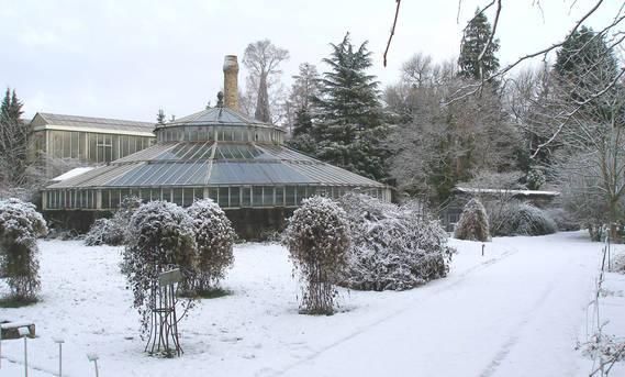 Jardin Botanique Fermeture Hivernale Universite De Strasbourg