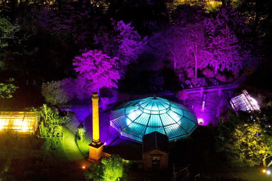 Jardin botanique retour sur la nuit des mus es 2016 for Jardin botanique 2016